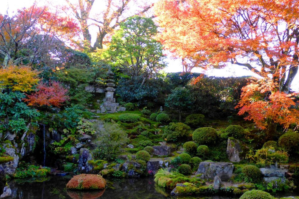 Jikko-in, Autumn leaves in Keishin-en (Garden)