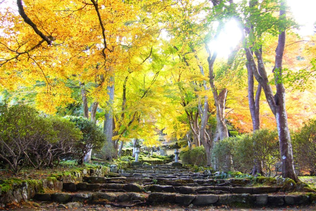 Kogen-ji, Precincts
