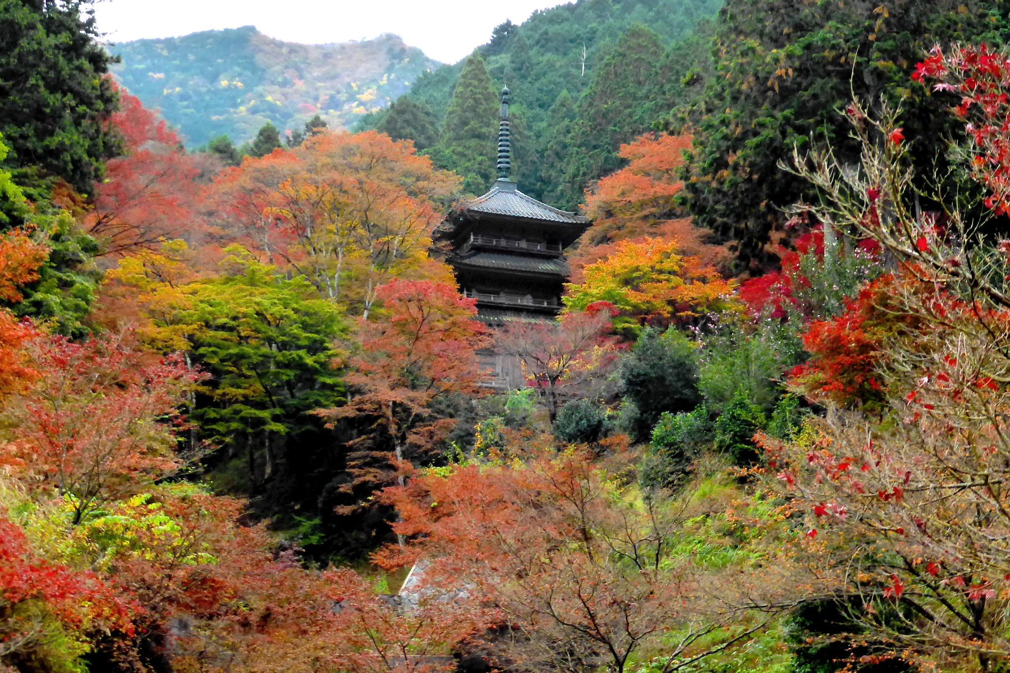 Kogen-ji, Tahoto (Pagoda)