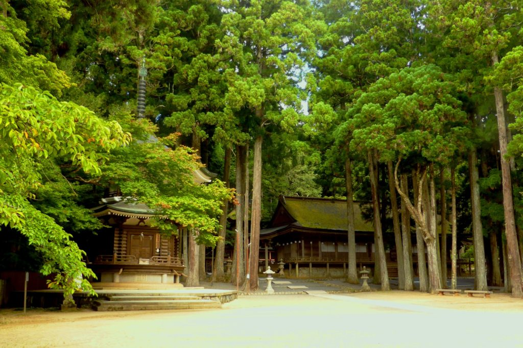 Kongobu-ji, Sanno-in (Shrine) and Rokkaku Kyozo (Sutra Repository)