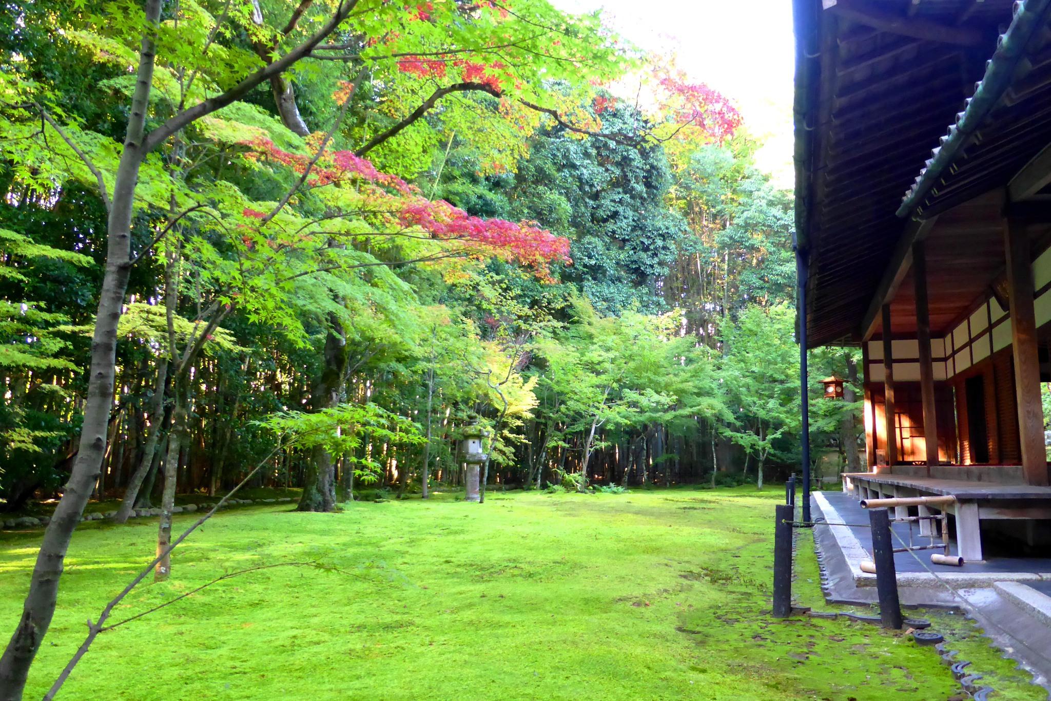 Koto-in, Garden