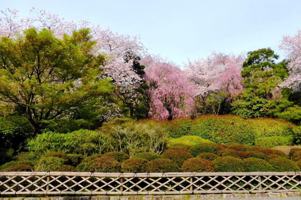 Ryoan-ji, Precincts