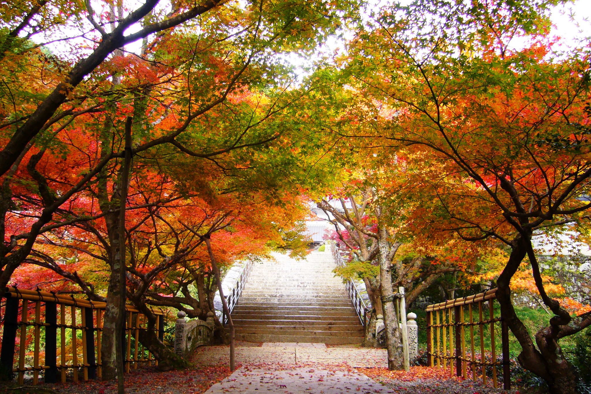 Entsu-ji, Precincts
