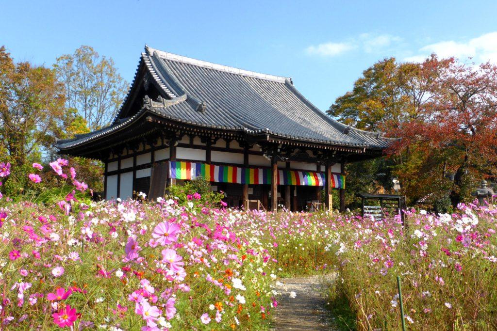 Hannya-ji, Precincts