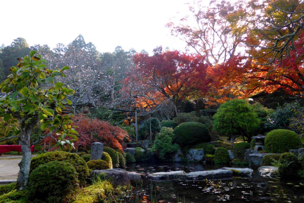 Jikko-in, Autumn leaves in Keishin-en (Garden)