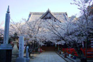 Kimii-dera, Hondo (Main Hall)