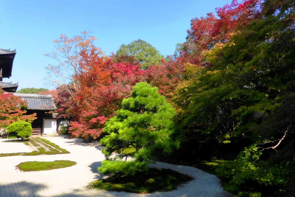 Tenju-an, Garden