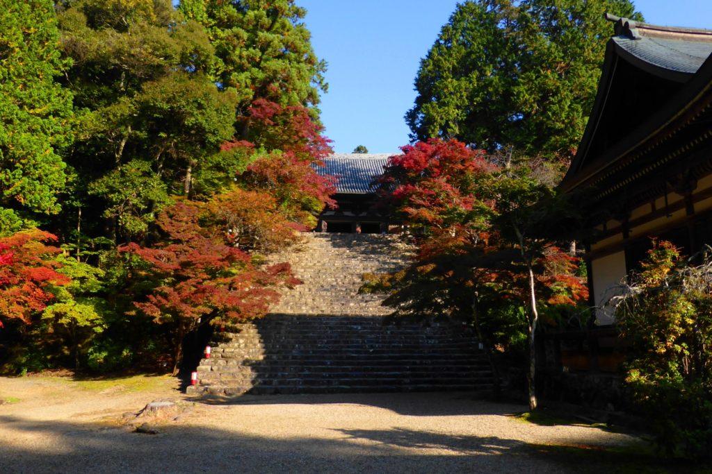 Jingo-ji, Precincts