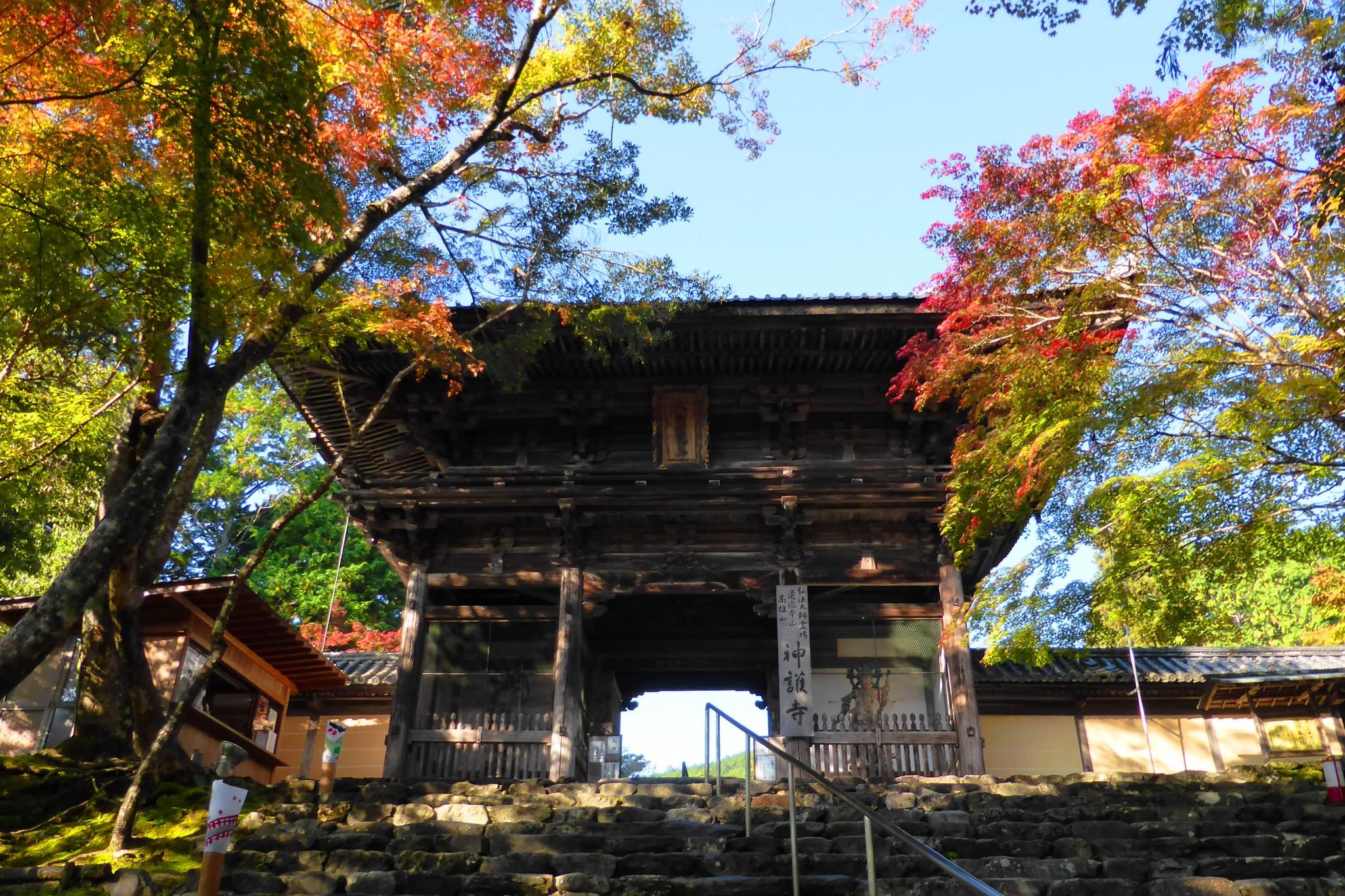 Jingo-ji, Romon (Gate)