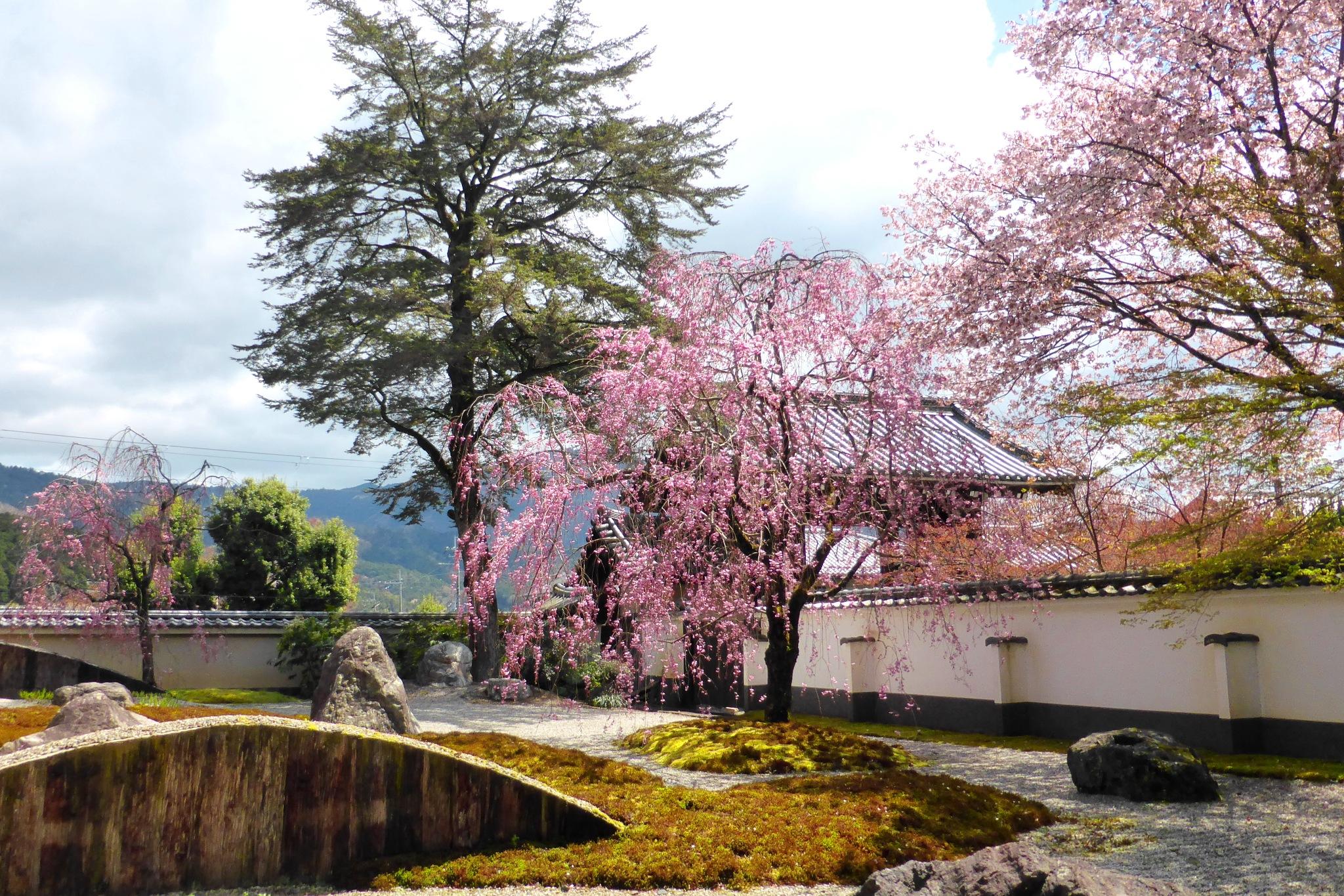 Jisso-in, Garden