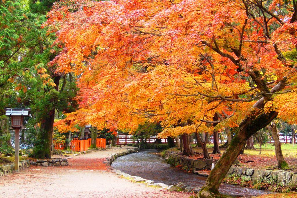 Kamigamo Shrine, Precincts