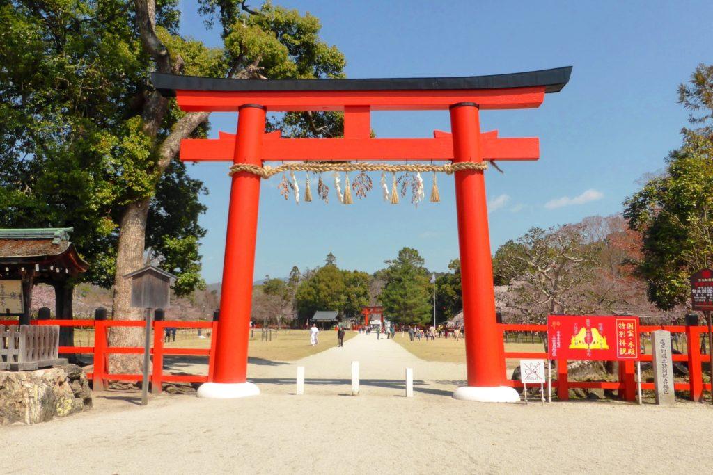 Kamigamo Shrine, Torii (Gate)