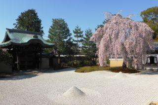Kodai-ji, Hojo Zentei (Garden)
