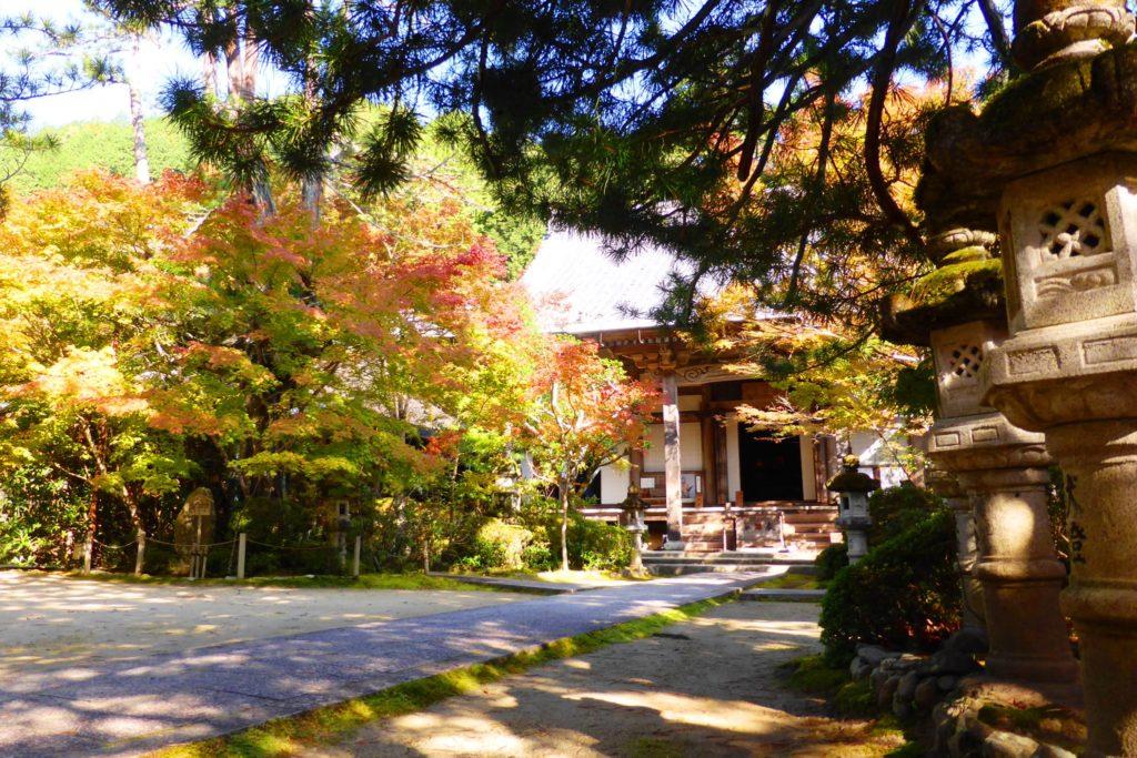 Saimyo-ji, Autumn leaves in Precincts