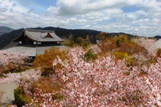Shogunzuka Seiryu-den – Yamashina-ku, Kyoto