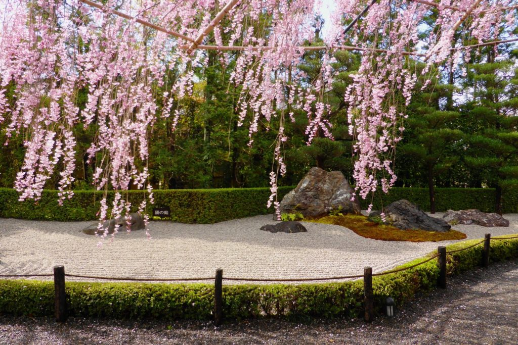 Taizo-in, Yo-no-niwa (Garden)