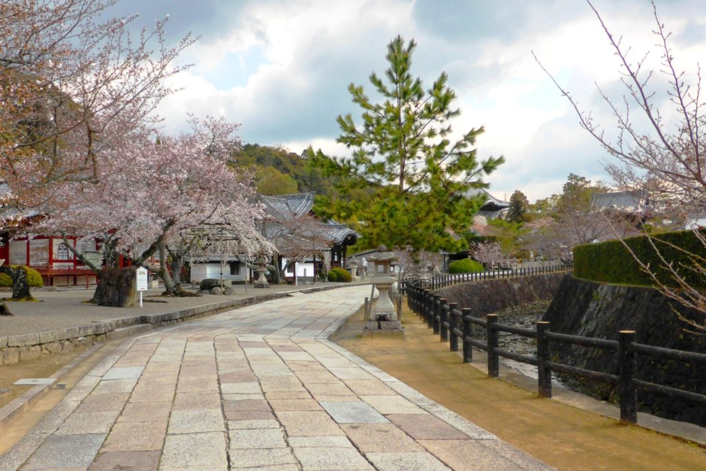 Kokawa-dera, Approach and Cherry blossoms