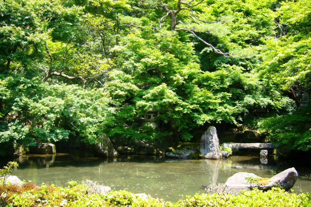 Renge-ji, Garden