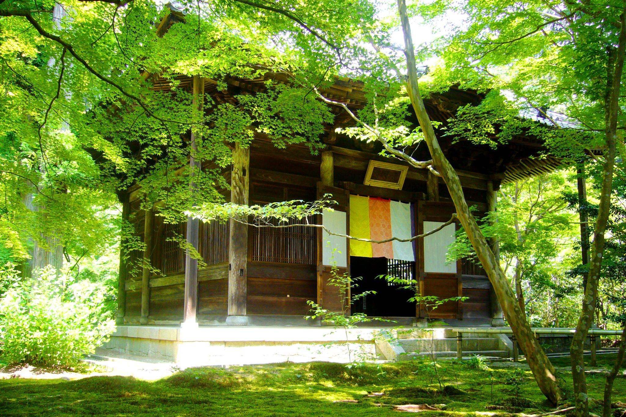 Renge-ji, Hondo (Main Hall)