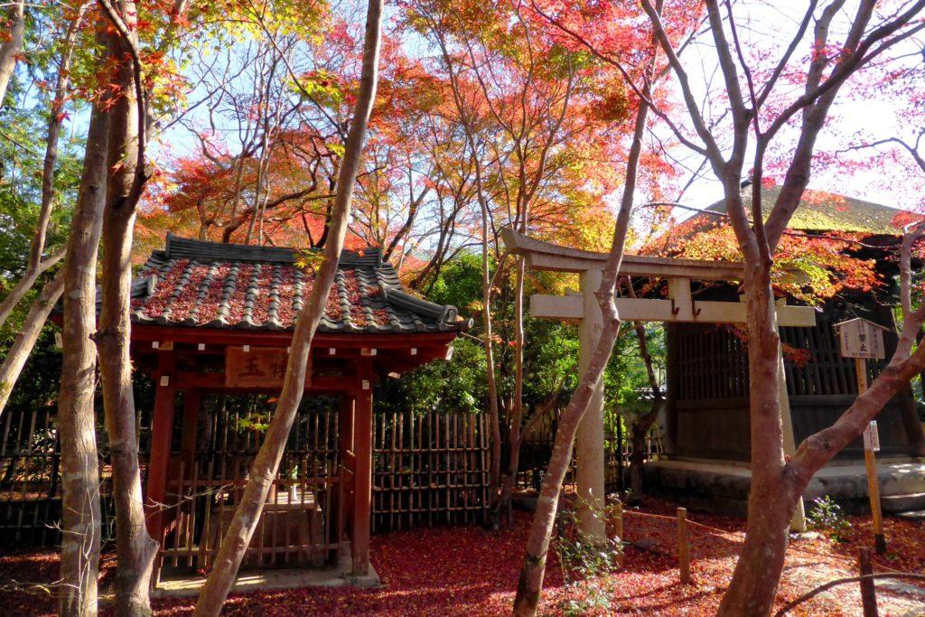 Renge-ji, Precincts